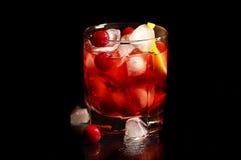 Freshening drink Royalty Free Stock Image