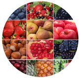 The freshest and useful fruit and berries stock photography