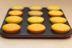 Freshly backed cupcakes on a backing tray Royalty Free Stock Images