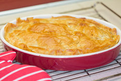 Freshly backed meat pie cooling on metal rack Royalty Free Stock Photos
