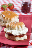 Freshly backed scones with cream and jam stock image