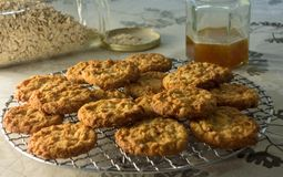 Freshly Baked Anzac Biscuits. Royalty Free Stock Photography