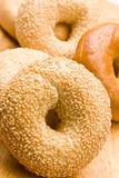 Freshly baked bagels Stock Images