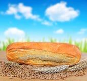 Freshly baked baguette Stock Images