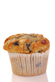 Freshly baked blueberry muffin Royalty Free Stock Images