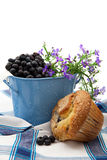 Freshly Baked Blueberry Muffin Stock Photos