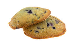 Freshly baked blueberry muffin tops on a white background Stock Photo