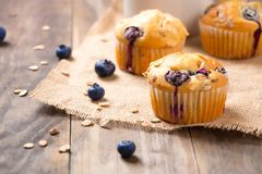 Homemade blueberry muffins on a rustic table. Freshly baked blueberry muffins with almond, oats and icing sugar topping on a rustic wooden table with berries royalty free stock photos