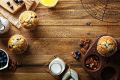 Freshly baked blueberry muffins in a rustic setting. With milk and coffee on the table overhead shot with copyspace royalty free stock photography