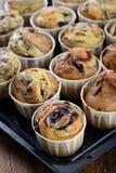 Freshly baked blueberry muffins Stock Image
