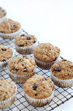 Freshly baked bran muffin on cooling tray Stock Image