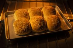 Freshly baked bread rolls in an oven.