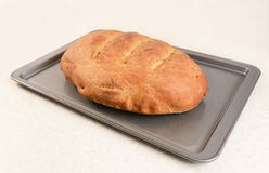 Freshly baked bread with slashed crust. Fresh loaf of multi seed malted bread with slashed crust on a baking tray stock images