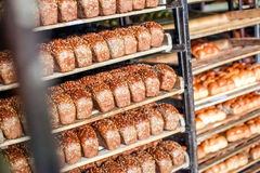 Freshly baked bread stacked and ready for packaging at factory Stock Photo