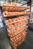 Freshly baked bread stacked and ready for packaging at factory Royalty Free Stock Images