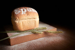 Freshly baked bread. Stock Images