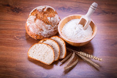 Freshly baked bread Stock Image