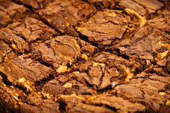 Freshly baked brownies. A close up on a rich dark freshly baked brownies Stock Image