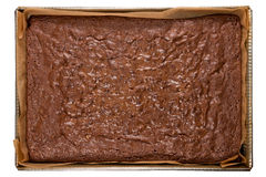 Freshly baked brownies in a backing tray, with clipping path Stock Image