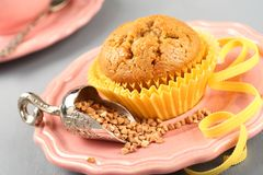 Freshly baked buckwheat muffins on the rose plate Royalty Free Stock Photography