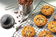 Freshly baked chocolate chip cookies Royalty Free Stock Photos