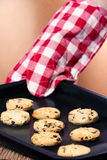 Freshly baked chocolate chip cookies Royalty Free Stock Image