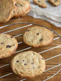 Freshly baked chocolate chip cookies. On grill royalty free stock photography