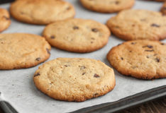 Freshly baked chocolate chip cookies. On paper royalty free stock photo