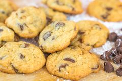 Freshly baked chocolate chip cookies closeup on wooden board Stock Images