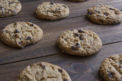 Freshly baked chocolate chip cookies Stock Photography
