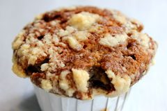 Freshly baked chocolate chip muffin Royalty Free Stock Image