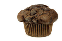 Freshly baked chocolate muffin Royalty Free Stock Photos