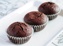 Freshly baked chocolate muffins Royalty Free Stock Image