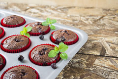 Freshly baked chocolate muffins with currant and mint in red forms. On wooden table Royalty Free Stock Photo