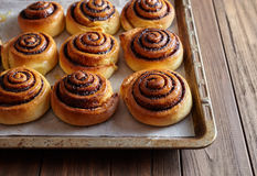 Freshly baked cinnamon rolls buns with cocoa and spices on a metal baking sheet. Christmas pastries. Top view. Royalty Free Stock Photo