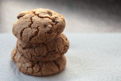 Freshly baked cookies Royalty Free Stock Photos
