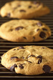 Freshly baked cookies Stock Image