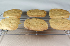 Freshly baked cookies cooling on a wire rack Stock Image