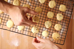 Freshly baked cookies on a tray served on kitchen table Stock Photography