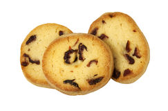 Freshly baked Cranberry Cookies Stock Photography
