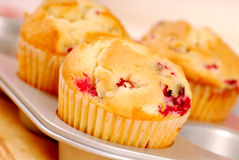 Freshly baked cranberry muffins Royalty Free Stock Photography