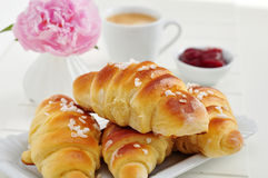 Freshly Baked Croissant Stock Photography
