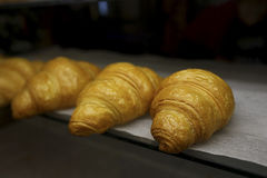 freshly baked croissants in the baking oven royalty free stock photo