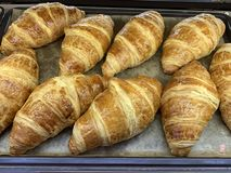Freshly baked croissants on tray food stock images