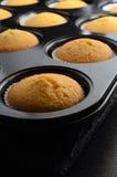 Freshly Baked Cupcakes in Bun Tin Stock Photos