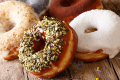 Freshly baked donuts with sunflower seeds and coconut close-up. Stock Photography