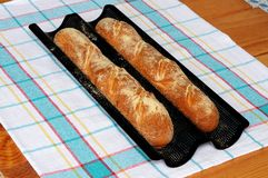 Freshly baked French baguettes. Stock Image