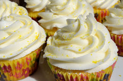 Freshly baked frosted lemon cupcakes Stock Images