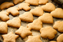 Freshly baked gingerbread cookies stock photography