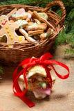 Freshly baked gingerbread cookies Stock Photos